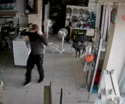 Hırsızları çaresizlikle izledi | Video