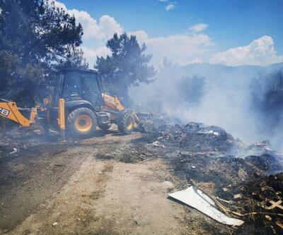 Kuşadası'nda 2 hektar makilik alan yandı