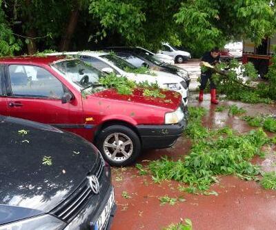 Son dakika... Yağış yüzünden ağaçlar araçların üzerine devrildi