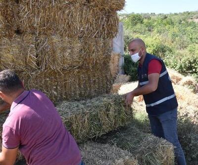 Balıkesir Büyükşehir Belediyesi'nden hayvan yetiştiricilerine yem desteği