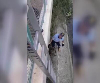 Sulama kanalına düşen köpeği itfaiye kurtardı | Video