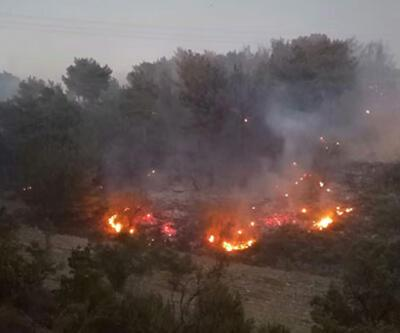 Son dakika haberi... Soma'da orman yangını
