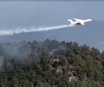 Son dakika... Sinop'taki orman yangını 'ateş kuşu'nun desteğiyle kontrol altında