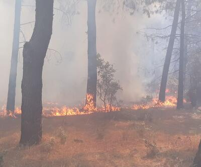 Aydos'taki yangınla ilgili 1 kişi gözaltına alındı