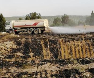 Tavşanlı'da 10 hektarlık ekili arazi yandı