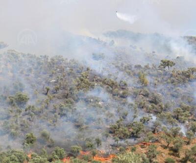 Son dakika haberi... Muğla'da orman yangını
