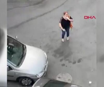 İki komşu arasında kedi maması tartışması | Video