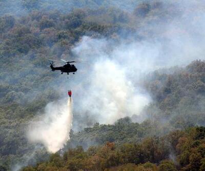 Son dakika... Edirne Valiliği: Bulgaristan sınırındaki yangında tek bir ağacımız yanmadı