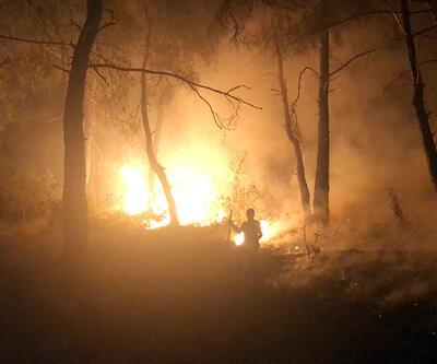 Son dakika: Bursa'da orman yangını kasıtlı çıkarıldı iddiası   Video