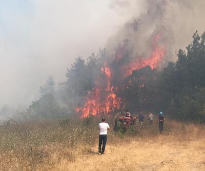 Son dakika... Bursa'da yerleşim bölgesi yakınında orman yangını
