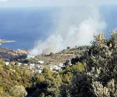 Son dakika haberi: Bodrum'da orman yangını