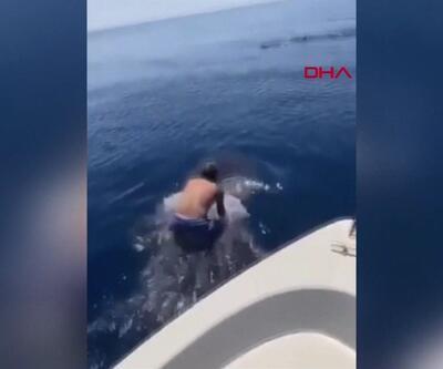 Balinanın sırtına binip yüzdü! | Video