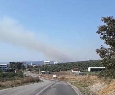 Bursa'da ormanlık alanda korkutan yangın