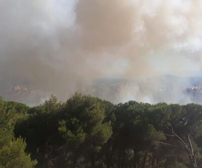Maltepe'de ormanlık alanda yine yangın çıktı