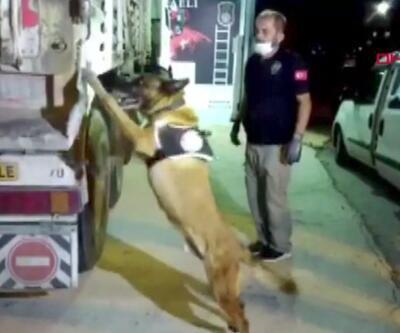 Polis Kocaeli'de şüpheli bir TIR'da arama yaptı. 132 kilo uyuşturucu ele geçirildi | Video