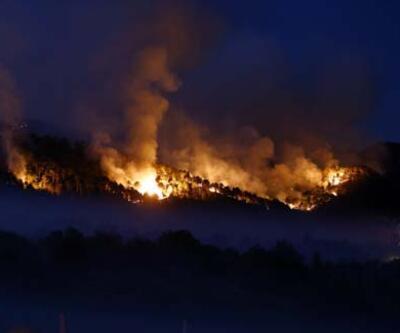 Ankara'da yeniden orman yangını!
