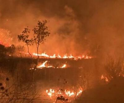 İzmir'de ağaçlık alanda çıkan yangın kontrol altına alındı