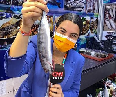 Son Dakika! Balıkçıların yüzü gülüyor: O sene bu sene | Video