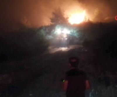 Manisa'daki orman yangını 6 saatte kontrol altına alındı | Video