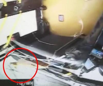 Son Dakika Haberler: Kafesinden kaçan kedi otobüsü birbirine kattı | Video