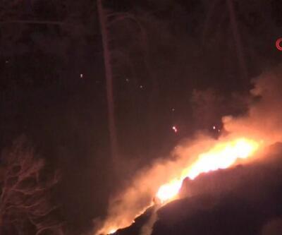 Antalya Adrasan'da orman yangını | Video