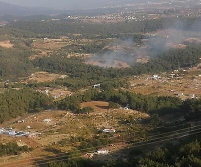 Son dakika haberi: İzmir'de ormanlık alanda yangın çıktı