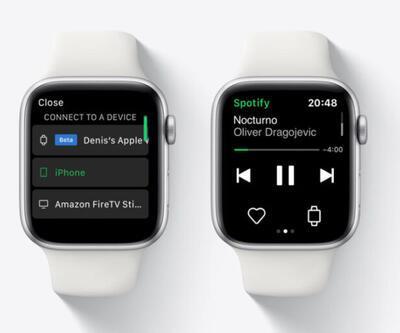 Spotify artık bağımsız çalışacak