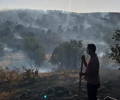 Elazığ'da orman yangını: 30 dönüm alan zarar gördü