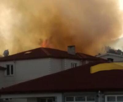 Son dakika haberi: Gebze'de orman yangını