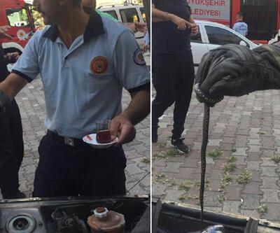 Otomobildeki yılan 2 saatte çıkarıldı