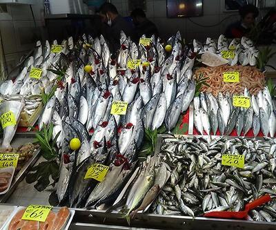 Tezgahlarda balık fiyatları