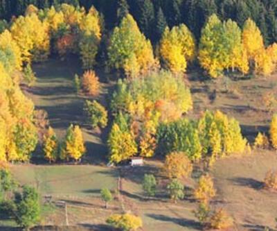 Sakin şehir Şavşat'ta sonbahar güzelliği