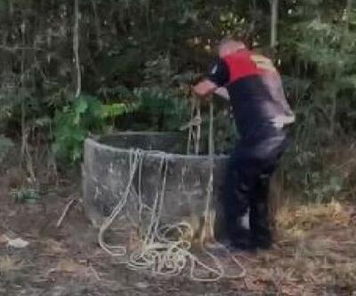 30 metrelik kuyuya düşen tilki kurtarıldı