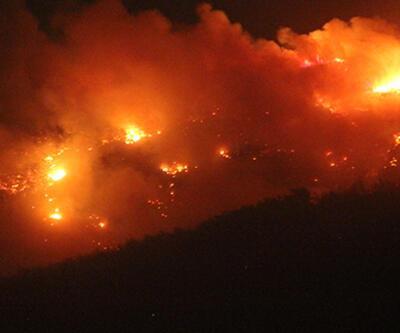 Başsavcılık'tan Hatay'daki orman yangınıyla ilgili açıklama