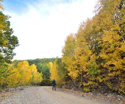 Doğa tutkunlarının sonbahardaki uğrak noktası