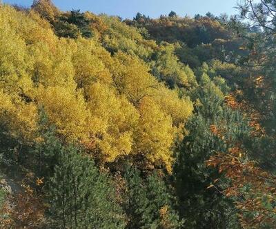 Simav'da sonbahar güzelliği