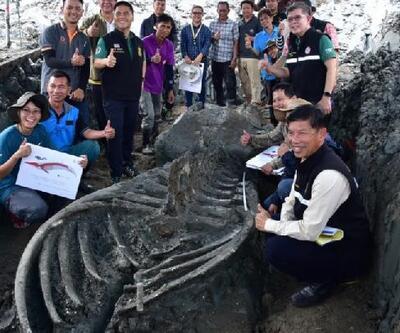 Tayland'da 5 bin yıllık balina kalıntıları bulundu
