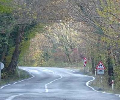 Ağaç tünel yolda görsel şölen