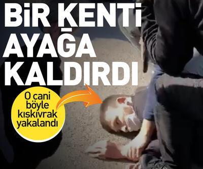 Polisi şehit eden zanlı yakalandı