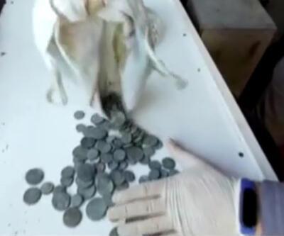 Tarihi sikkeleri satamadan yakalandı | Video