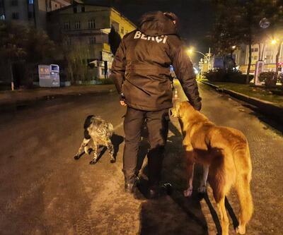 Polisler, aç kalan hayvanları elleriyle besledi