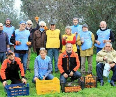 Türküler eşliğinde topladıkları 2 ton mandalinayı ihtiyaç sahiplerine dağıttılar