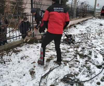 Demirlere sıkışan köpek kurtarıldı