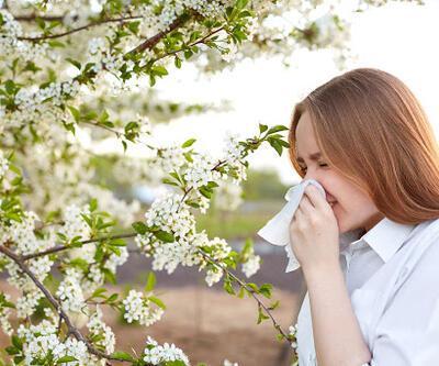 Polen Alerjisine Ne İyi Gelir? Polen Alerjisi Nasıl Geçer? Polen Alerjisine İyi Gelen Şeyler
