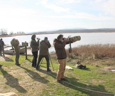 Kırklareli'nde kış ortası su kuşu sayımı yapıldı