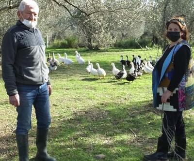 Torunlarına organik yumurta yedirmek için yola çıktılar, çiftlik sahibi oldular