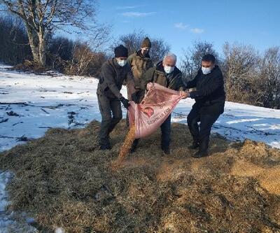 Kırklareli'de yaban hayvanları için doğaya yem bırakıldı