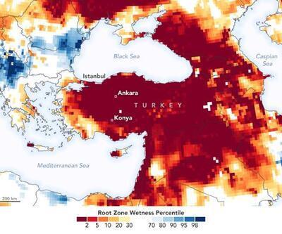 WWF'den Türkiye'ye uyarı: Kuraklık için 10 il tehlikede