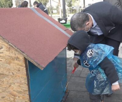 Sokak hayvanları için atıklardan kulübe yapıldı