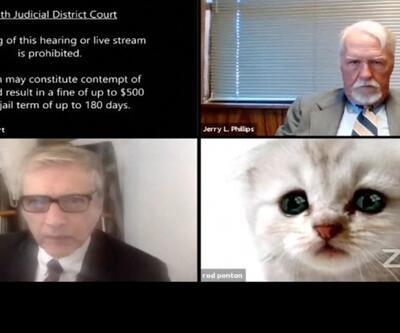 "ABD'li avukat ""kedi"" oldu"
